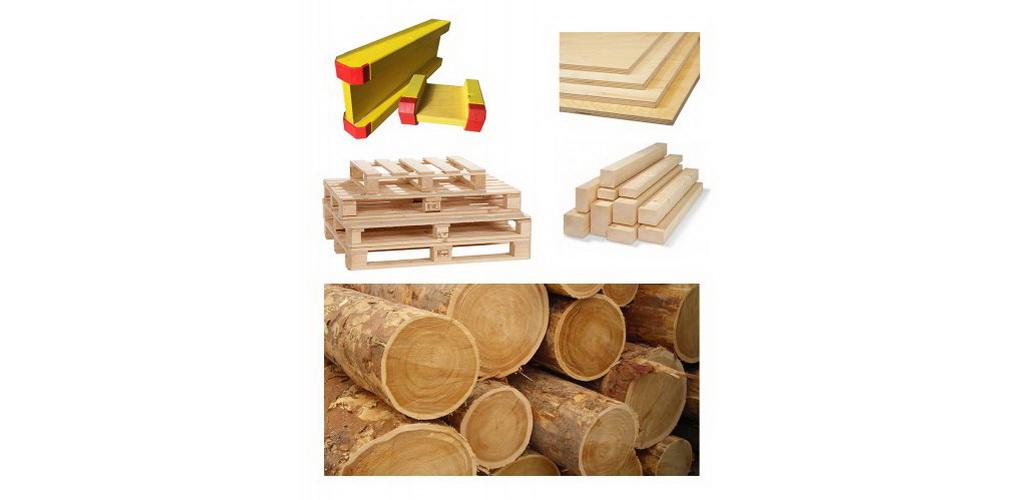 Orman Ürünleri